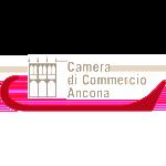 logo-an.camcomBIG